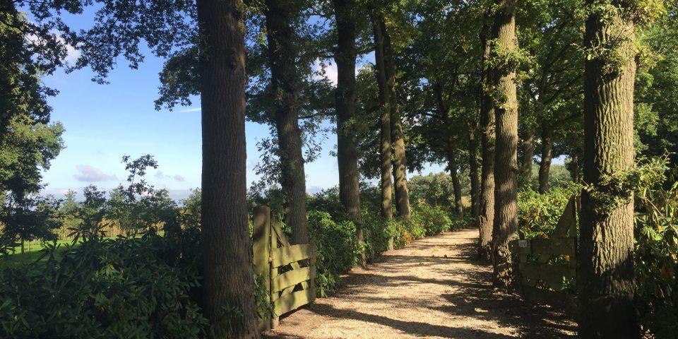 Natuurbegraafplaats     'Hoeve Ruth'