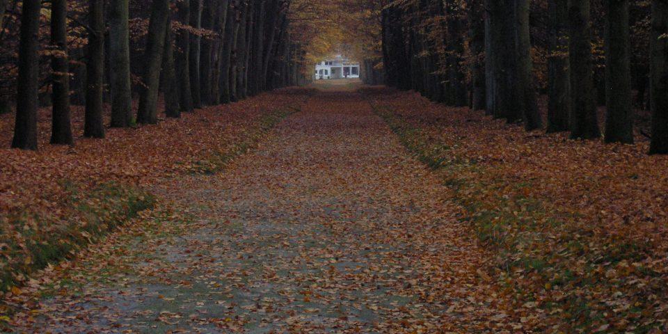 Natuurbegraafplaats Landgoed 'De Polberg'